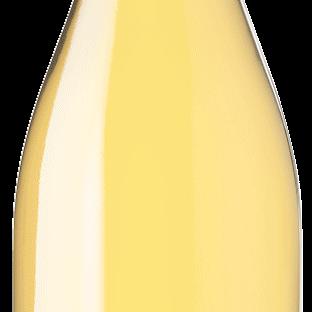 Bottle white winte-SL-BLANC Cépage de France VDF LePlan-Vermeersch