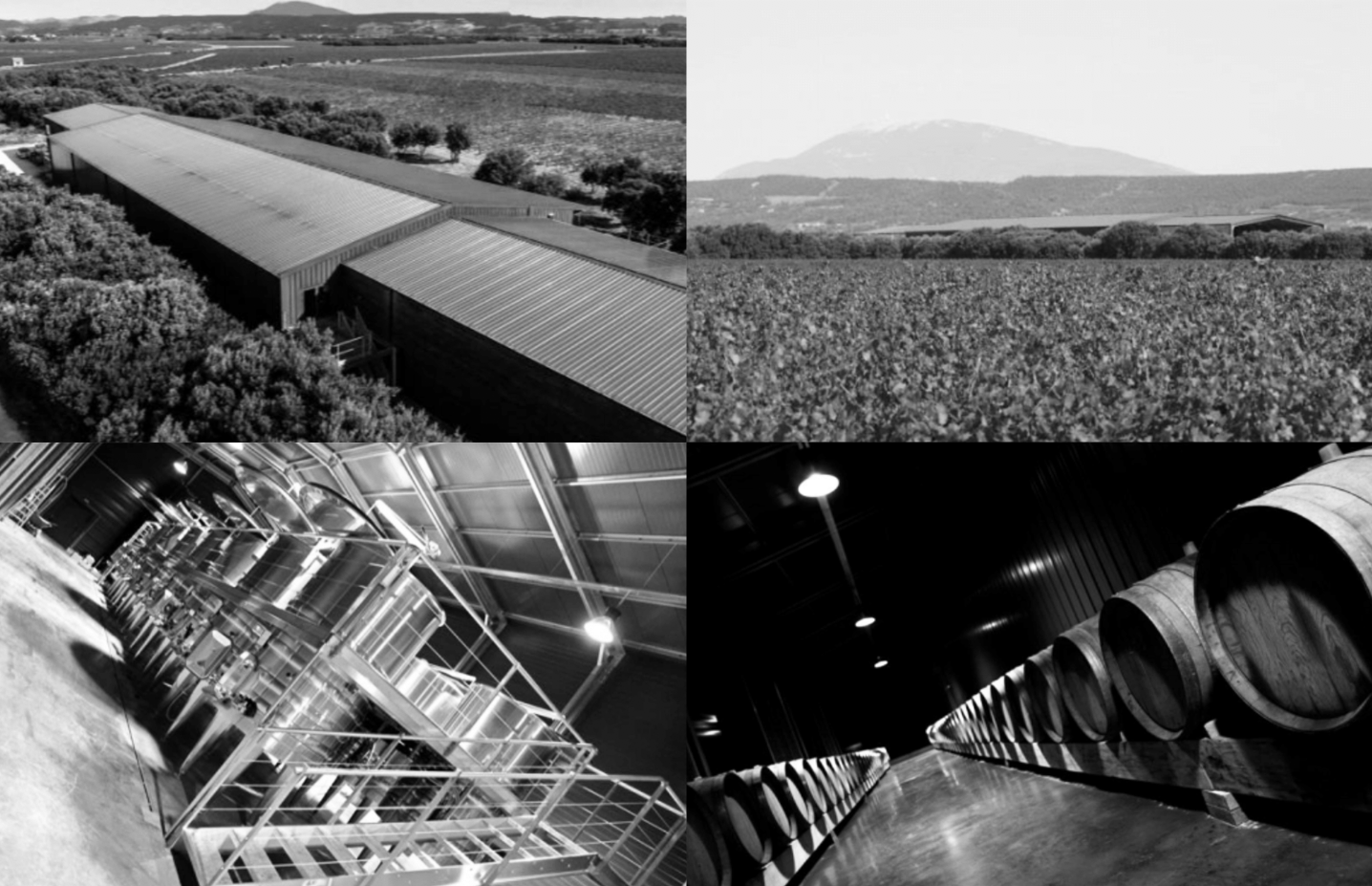 Montage image of the vineyard the barrels and of LePlan Vermmersch estate